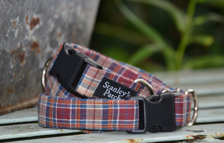 Angus - Dog Collar