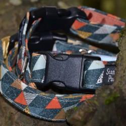 Henry - Dog Collar