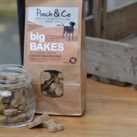 Big Bakes - Salmon & Seaweed - Dog Treats