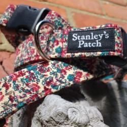 Maggie - Dog Collar