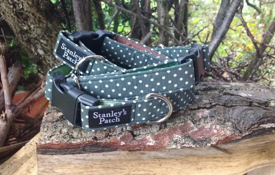 Bruce - Dog Collar