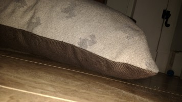 Scottie Dog Bed Beige